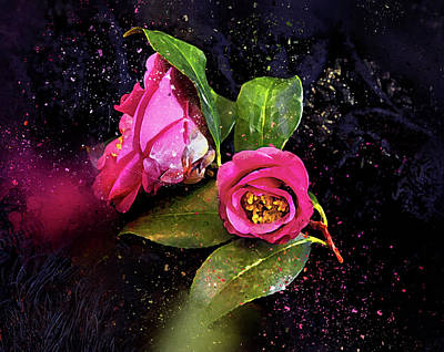 Photograph - Camellia Stardust by Kay Brewer