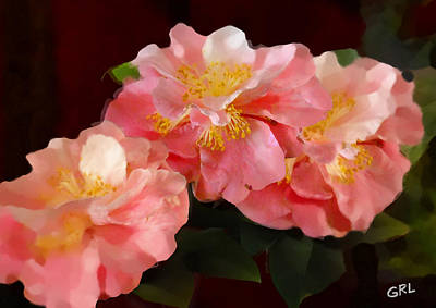 Art Print featuring the painting Camellias 1cmods1b Digital Painting Gulf Coast Florida by G Linsenmayer