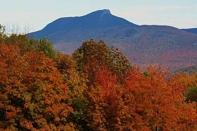 Photograph - Camel's Hump by Todd Rojecki
