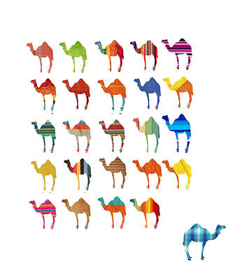 Camel Digital Art - Camels by Art Spectrum
