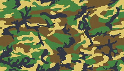 Photograph - Camo 1 by Joe Kozlowski