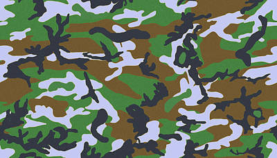 Photograph - Camo 2 by Joe Kozlowski