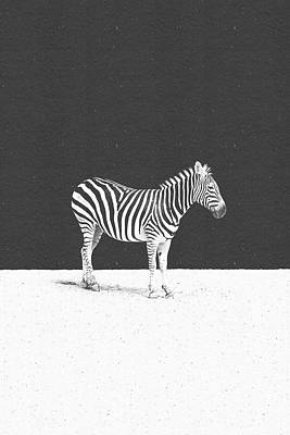 Zebra Digital Art - Camouflage by Daniel Coulmann