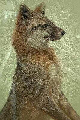 Digital Art - Camouflage Fox by Annie Omens