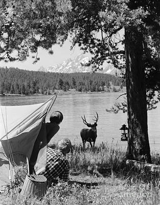 Campers And Deer, C.1960s Art Print