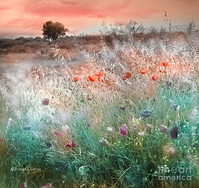 Digital Art - Campos De Madrid by Alfonso Garcia