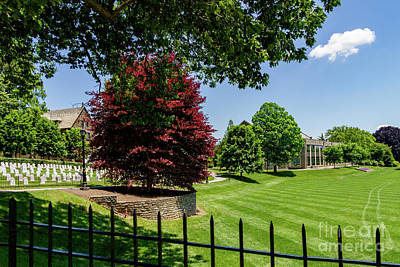 Photograph - Campus View by William Norton