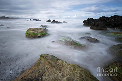 Central Oregon Coast Photograph - Can We Go Straight Here? by Masako Metz
