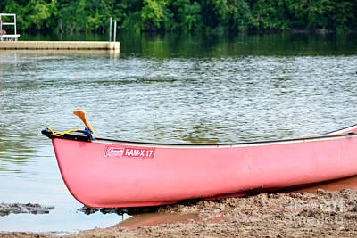 Photograph - Can You Canoe by Traci Cottingham