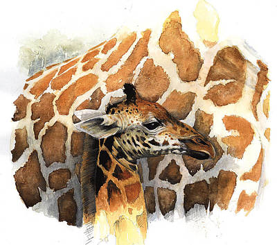 Baby Giraffe Painting - Can You See Me Yet by Roger Bonnick