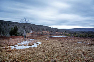 Photograph - Canaan Valley Beaver Pond by Jack Nevitt