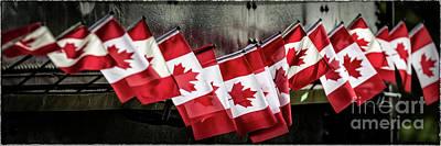 Photograph - Canada 150 by Brad Allen Fine Art
