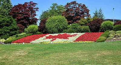 Photograph - Canada Flag In Bloom by Tom Cochran