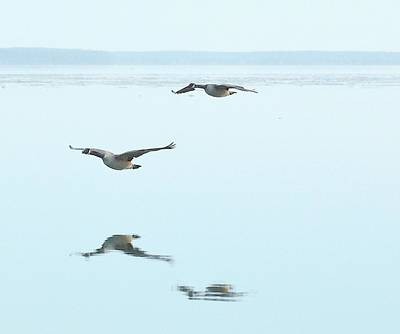 Digital Art - Canada Geese Flying At Big Bay Point  Three  by Lyle Crump