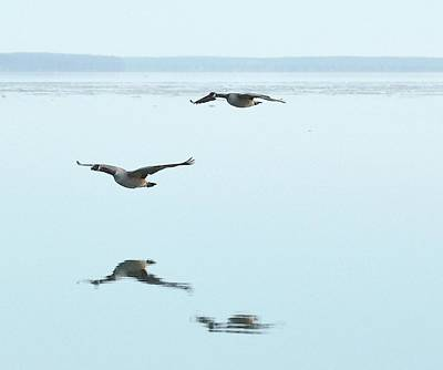 Digital Art - Canada Geese Flying At Big Bay Point  Two  by Lyle Crump