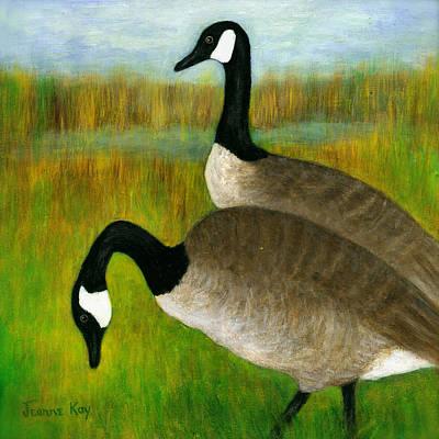 Canada Geese Grazing  Art Print