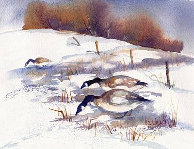 Canada Geese In Stubble Field II Art Print by Peggy Wilson