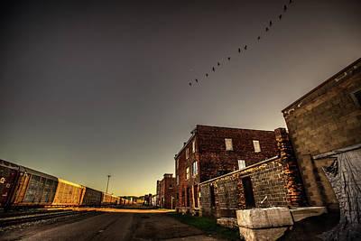 Photograph - Canada Geese by Jakub Sisak