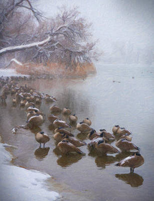 Digital Art - Canada Geese On Lake During Snowstorm by Barbara Rogers Nature Inspired Art Photography