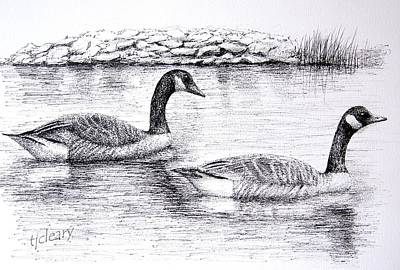 Canada Geese Original by Terence John Cleary
