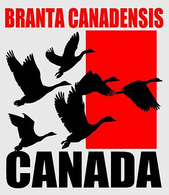 Canadian Geese Mixed Media - Canada Goose 2 by Otis Porritt