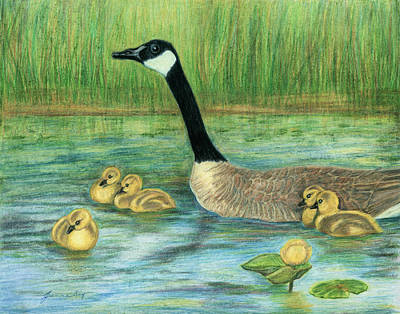 Art Print featuring the painting Canada Goose And Goslings by Jeanne Kay Juhos