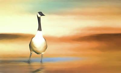 Canada Goose Art Print by Sharon Lisa Clarke