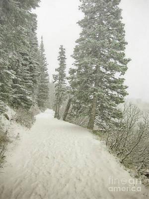 Photograph - Canada Lake Louise Snow Trail Landscape by Andrea Hazel Ihlefeld