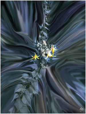 Photograph - Canada Lily Abstract by Wayne King