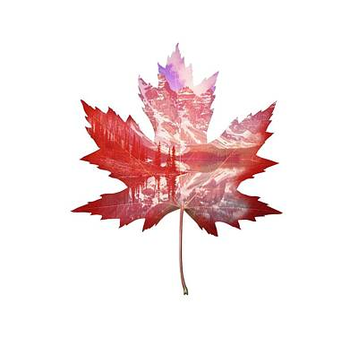 Maple Leaf Art Digital Art - Canada Maple Leaf by Deer Devil Designs