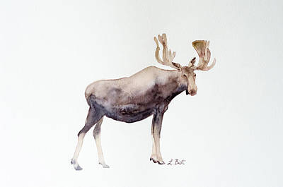 Painting - Canada Moose by Laurel Best