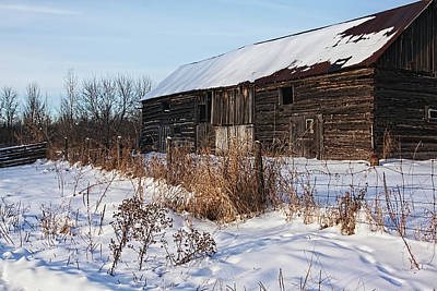 Photograph - Canadian Barn In The Winter by Tatiana Travelways