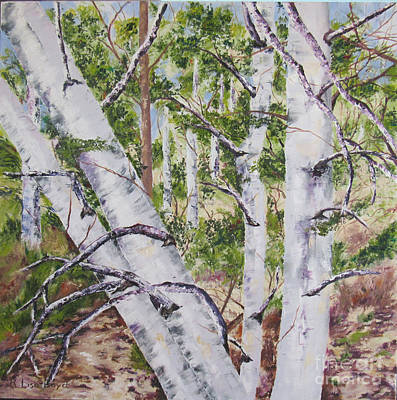 Painting - Canadian Birch Trees by Lisa Boyd