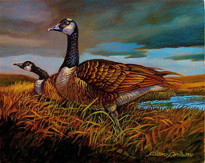 Canadian Geese Painting - Canadian Geese by Alan Carlson