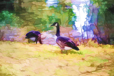 Canadian Geese Painting - Canadian Geese In The Park 3 by Lanjee Chee