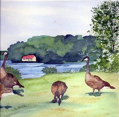 Canadian Geese S Print by Gloria Couture