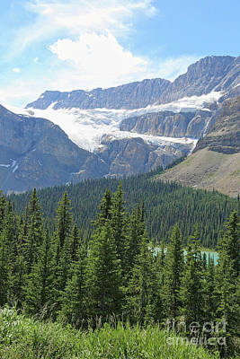 Photograph - Canadian Glacier In Summer by Carol Groenen