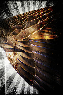 Digital Art - Canadian Goose Wing  by Ayasha Loya