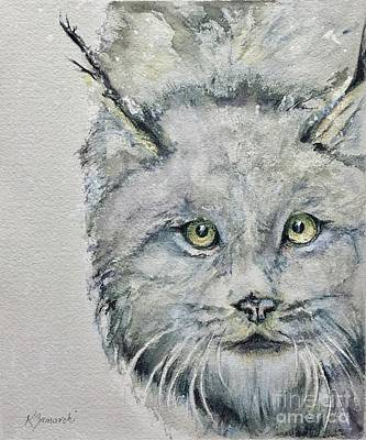 Canadian Lynx Original