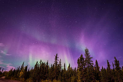 Photograph - Canadian Northern Lights by Serge Skiba