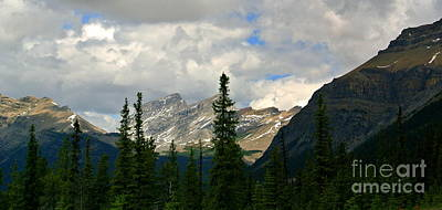 Photograph - Canadian Rockies, Alta. by Elfriede Fulda