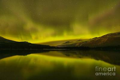 Photograph - Canadian Rockies Aurora by Adam Jewell