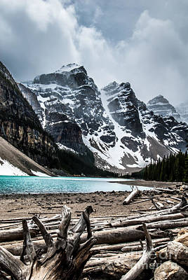 Photograph - Canadian Rockies by Blake Webster