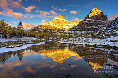 Photograph - Canadian Rockies Golden Autumn Reflection by Mike Reid