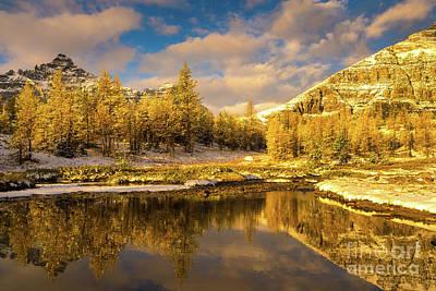 Photograph - Canadian Rockies Golden Landscape Autumn Reflection by Mike Reid