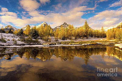 Photograph - Canadian Rockies Golden Larches And Towering Peaks by Mike Reid