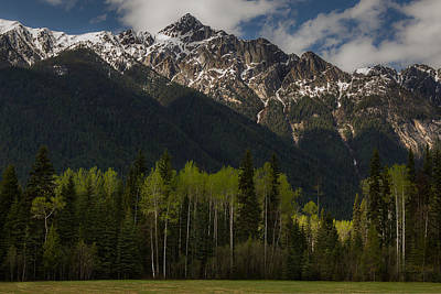 Linda King Photograph - Canadian Rockies With Aspen Trees 5344 by Linda King