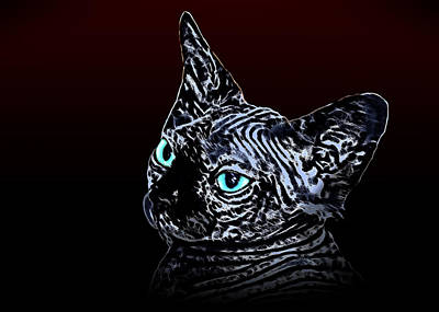 Portraits Of Pets Mixed Media - Canadian Sphinx by Denis Bajan