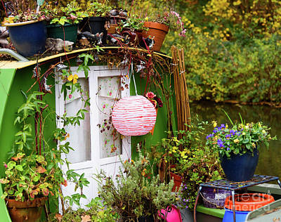 Photograph - Canal Boat Garden by Colin Rayner