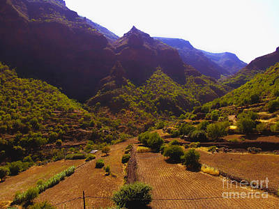 Digital Art - Canarian Agriculture by Andrew Middleton